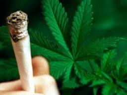 Contoh Artikel Tentang Kenakalan Remaja Dan Narkoba Fanidya111